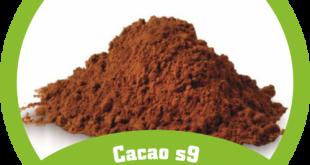 پودر کاکائو خالص