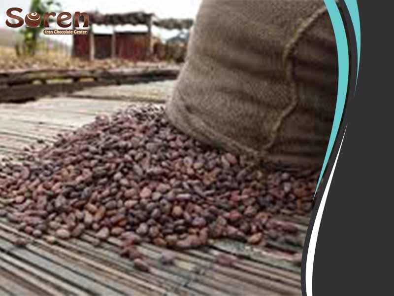 پر فروش پودر کاکائو خارجی