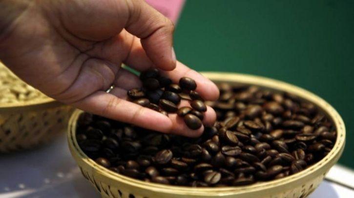 مراکز اصلی پخش قهوه فوری
