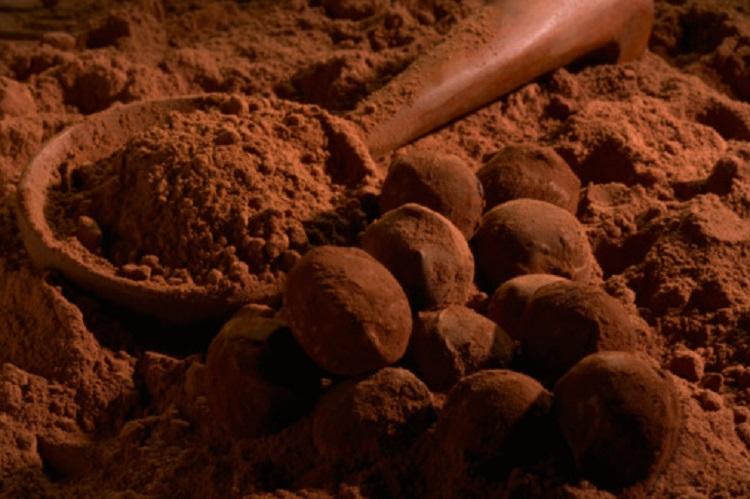 فروشنده پودر کاکائو کارگیل اصل