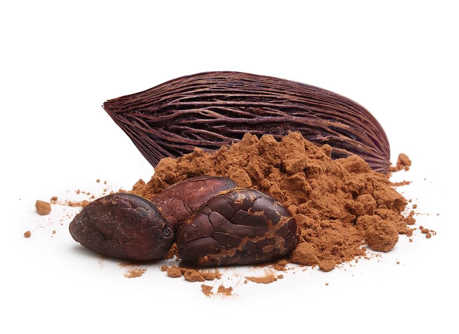 فروش ویژه پودر کاکائو درجه یک