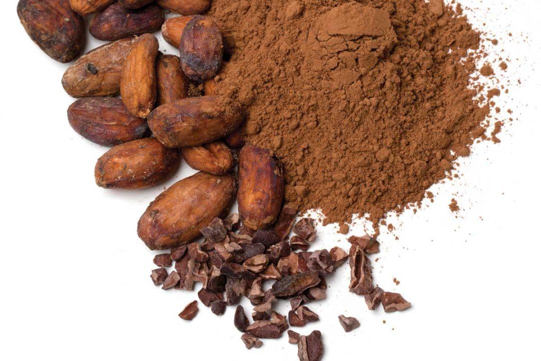 پودرهای کاکائو موجود در بازرگانی Soren