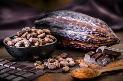 مراکز عرضه پودر کاکائو خارجی در تهران