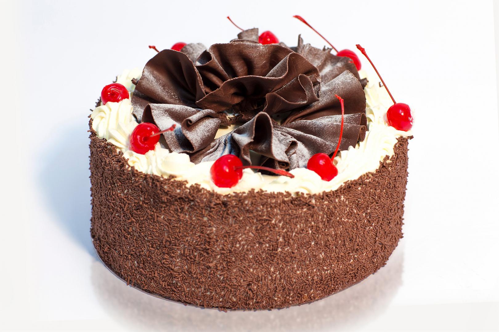 بهترین پودر کاکائو برای کیک