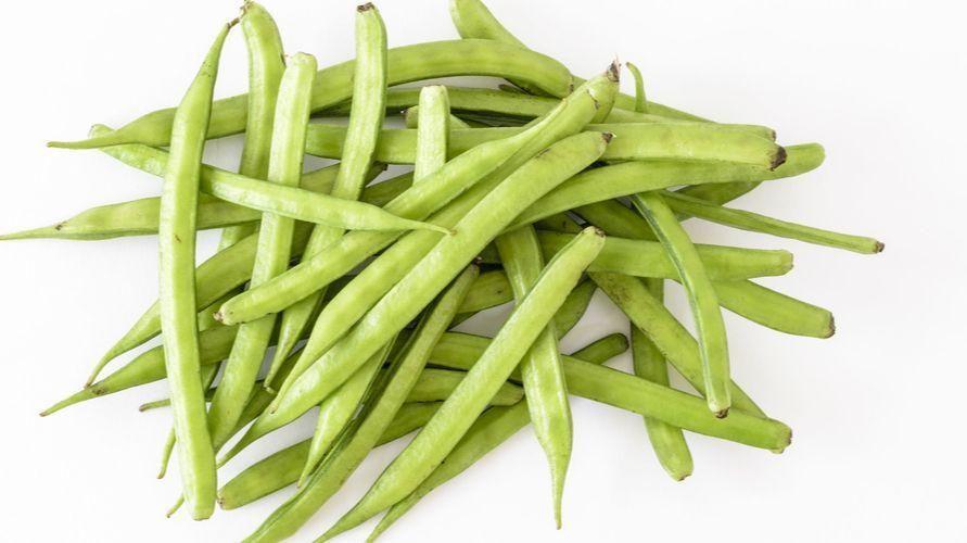 پودر گوار آدامسی را از کجا تهیه کنیم