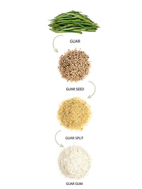 گوارگام چیست (what is Guar Gum)